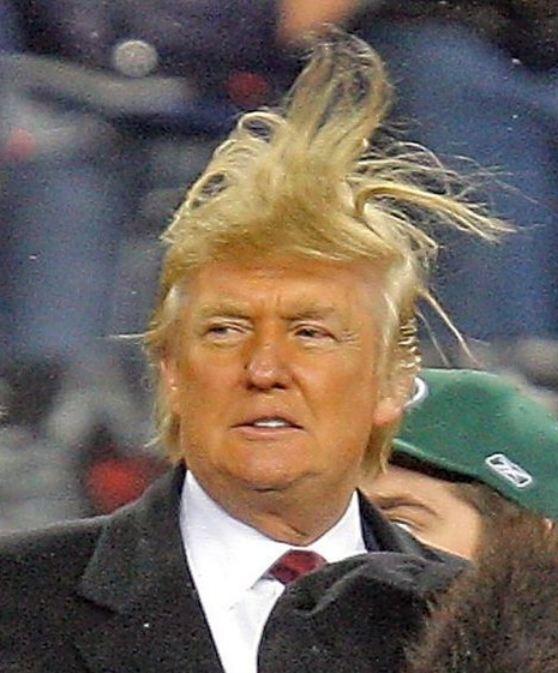 trump-hair.jpg